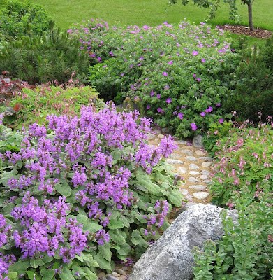 Pihasuunnittelulla ja puutarhasuunnittelulla nostetaan kohteen arvoa